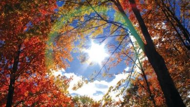Herbstzeit – Wohlfühlzeit Okt 2016